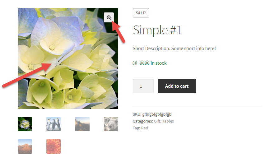 WooCommerce: Disable Zoom, Gallery Slider & Lightbox @ Single Product