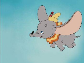 Dumbo Elephant Addiction Therapy