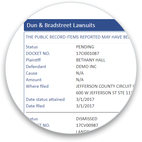 D&B Lawsuits addon section on a business credit report