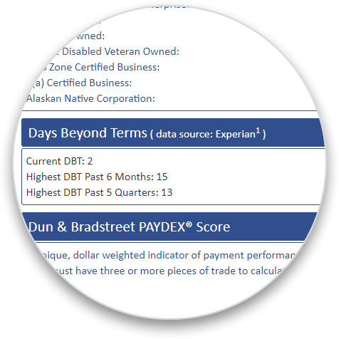 Experian Days Beyond Terms addon on a business credit report