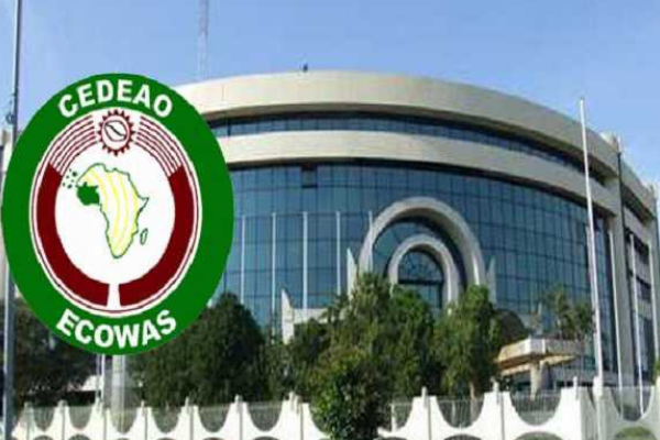 The spirit of the ECOWAS common external tariff - Businessday NG
