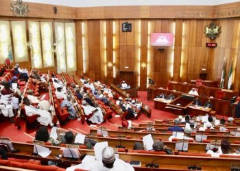 Labour Party lambasts NASS over hate speech bill - Businessday NG