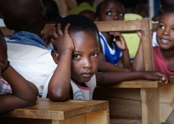 Why entrepreneurship-based curriculum should hold sway for Nigeria education - Businessday NG
