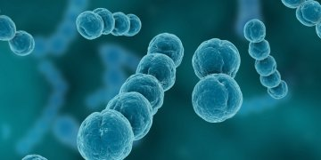 Coronavirus: Nigeria now has 7 functional laboratories - Businessday NG