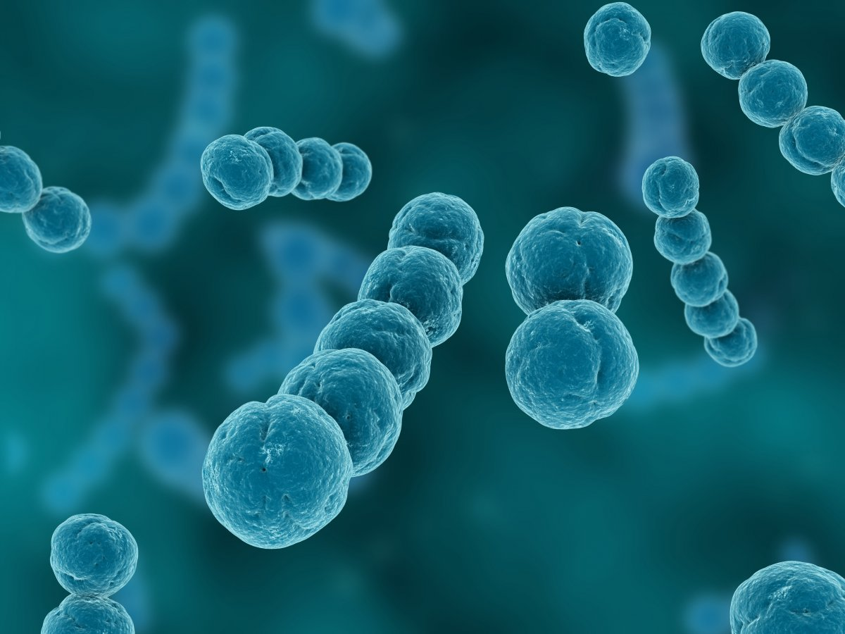 UBA aids Nasarawa with N28.5m to fight coronavirus - Businessday NG