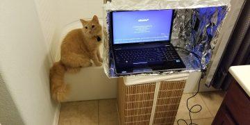 computer cat - More Devs, More Destruction: Inside Zcash Second Crypto Ceremony