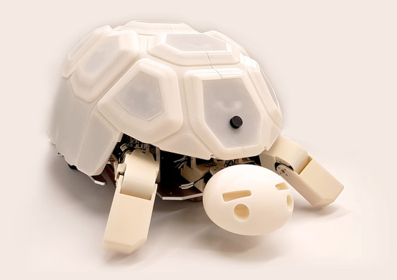 This turtle shows children that the abuse of robots is bad