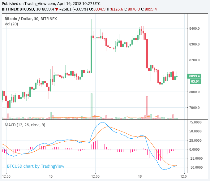 the bitcoin price briefly reached 8400 and cardano jumped 11 in favor of the recovery of the market - The Bitcoin price briefly reached $ 8,400 and Cardano jumped 11% in favor of the recovery of the market