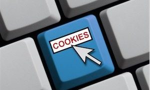Cookies Are Secure and Vital to Ecommerce - Despite GDPR, cookies are vital for e-commerce