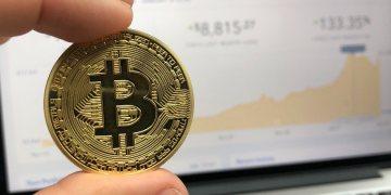 investing in crypto test on profitcoins io - Investing in Crypto: Test on Profitcoins.io