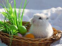 shutterstock 1009664179 - In early Easter, cold and snow hurt retail sales in April, according to a report