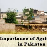 Importance of Agriculture in Pakistan
