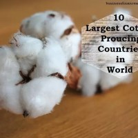 Top 10 Largest Cotton Producing Countries in World