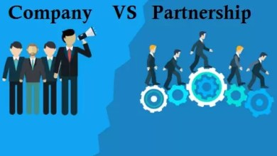 Difference between Partnership and Company