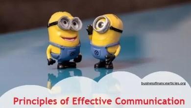 principles of effective communication