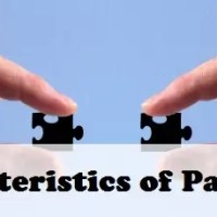 Characteristics of Partnership