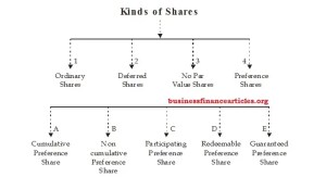 kinds of shares in company