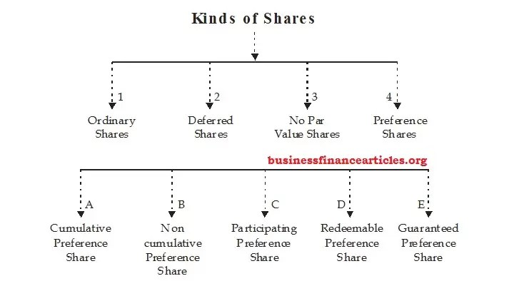 Types of Shares in Company