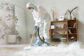 Established Cleaning Company for sale IN UAE