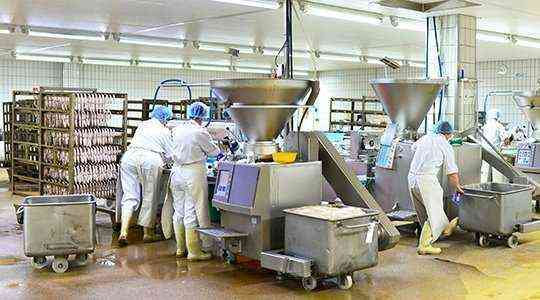 Food Factory business for sale in Dubai