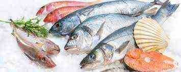 FISH AND MEAT SELLER RUNNING SHOP FOR SALE IN UAE