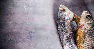 Fish shop for sale in Dubai