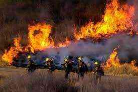 Fire Company for sale in Dubai
