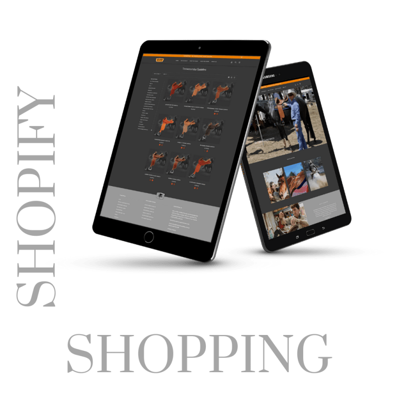 SHOPIFY website design packages