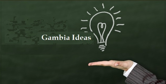 lucrative small business opportunities in Gambia