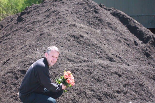 Yorkshire's Green Compost Nurtures Blooming Lovely Lancashire Red Roses