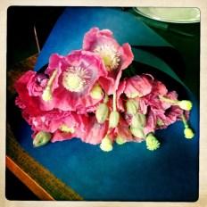 Inspiration naturelle et florale pour Absolution et Sweet and Safe Kiss