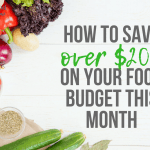 How to Save over $200 on Your Food Budget This Month