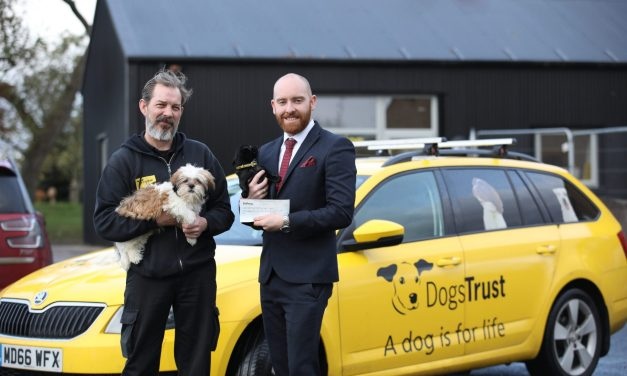 Christmas comes early for doggy residents thanks to charity donation from Bellway