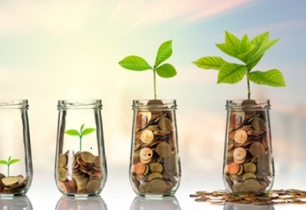 Seeking Investment: What can you Expect?