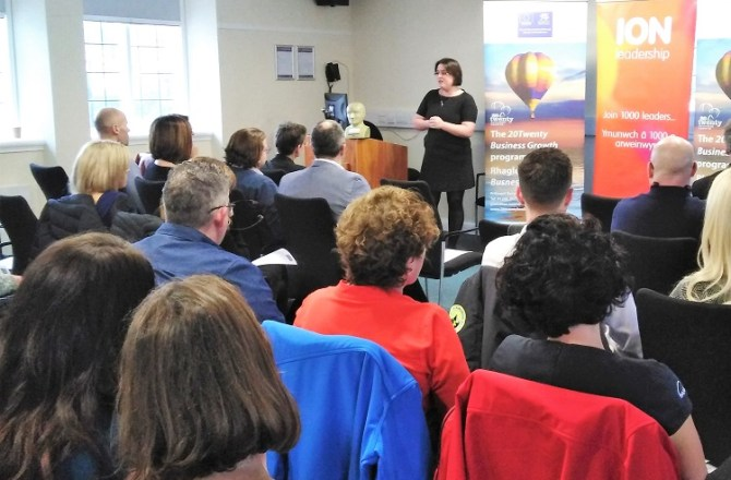 Business Growth Programme Makes Big Impact on North Wales Firms