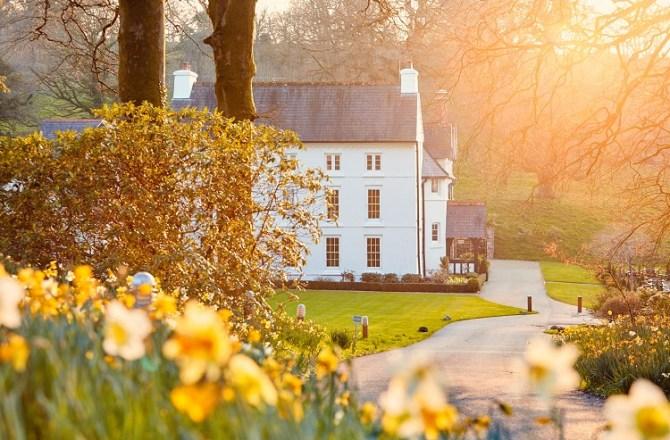 Grove of Narberth Unveil a Magical Refurbishment