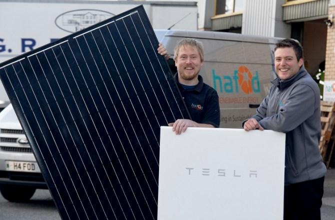 Solar Power No Longer Needs Subsidies Says Renewable Energy Boss