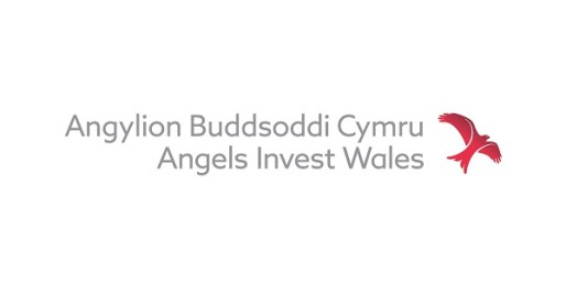 Four Lead Angels Prepare to Invest in Wales