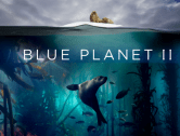 BBC's Blue Planet Comes to Wales for British Science Week