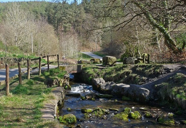 Funding Boost for Cwmcarn Forest