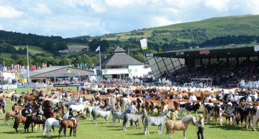 Working Together for a Thriving Powys at the Royal Welsh Show
