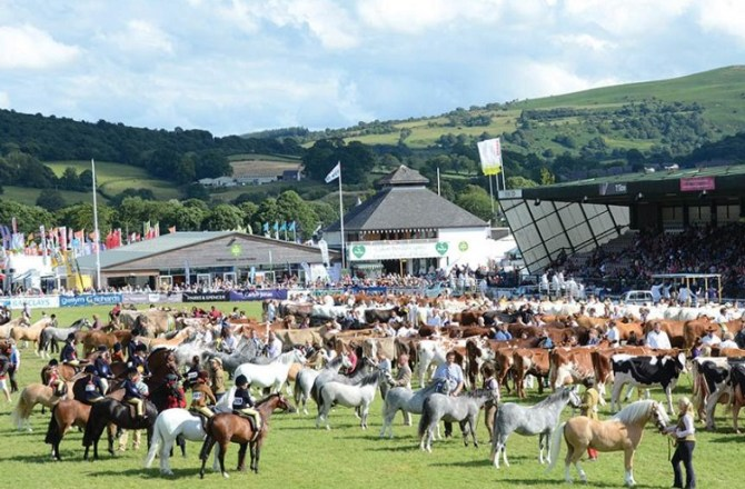 170 International Buyers Set to Secure Deals at Royal Welsh Show