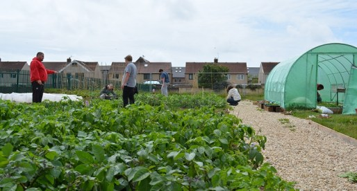The Garden that Grows Skills and Confidence