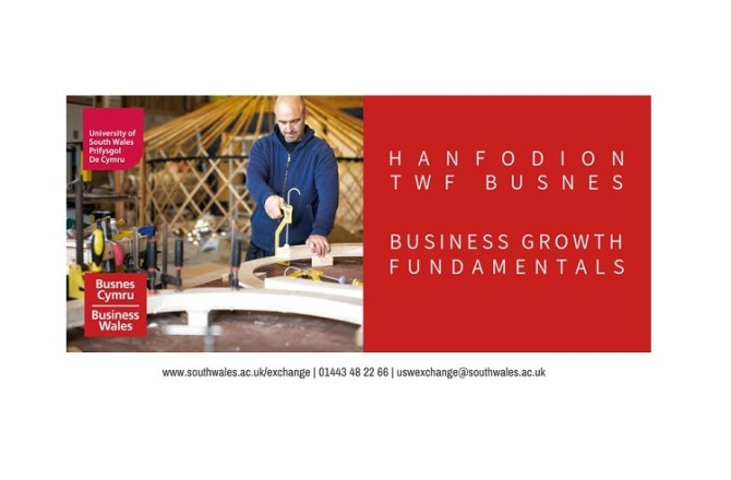 <strong> 16th May – Pontypridd  </strong><br> Business Growth Fundamentals