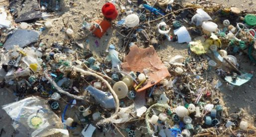 Businesses Encouraged to Join Wales Clean Seas Partnership
