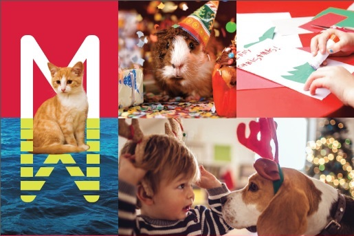 Milford Waterfront Launches Christmas Card Competition