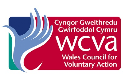 Supporting Great Leadership in the Third Sector in Wales