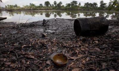 Niger Delta Ecosystem Under Huge Threat—Kachikwu