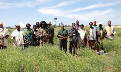 USAID Gives $1m Grant to 20 Farmers, Entrepreneurs