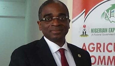 Nigeria's WTO Trade Facilitation Agreement Excites NEPC Boss